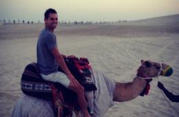 qatar-2-camello